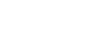 LinguaFlex